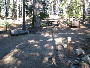 Camp Site 2 at Camp Shelly with bear box and picnic table