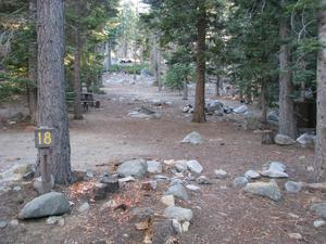 Camp Site 18 at Camp Shelly with pine trees and picnic table
