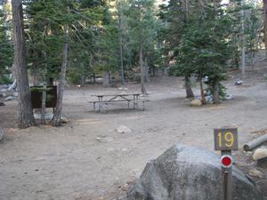 Camp Site 19 at Camp Shelly with pine trees, bear box and picnic table